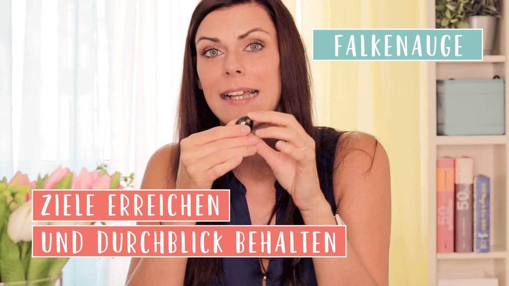 Falkenauge